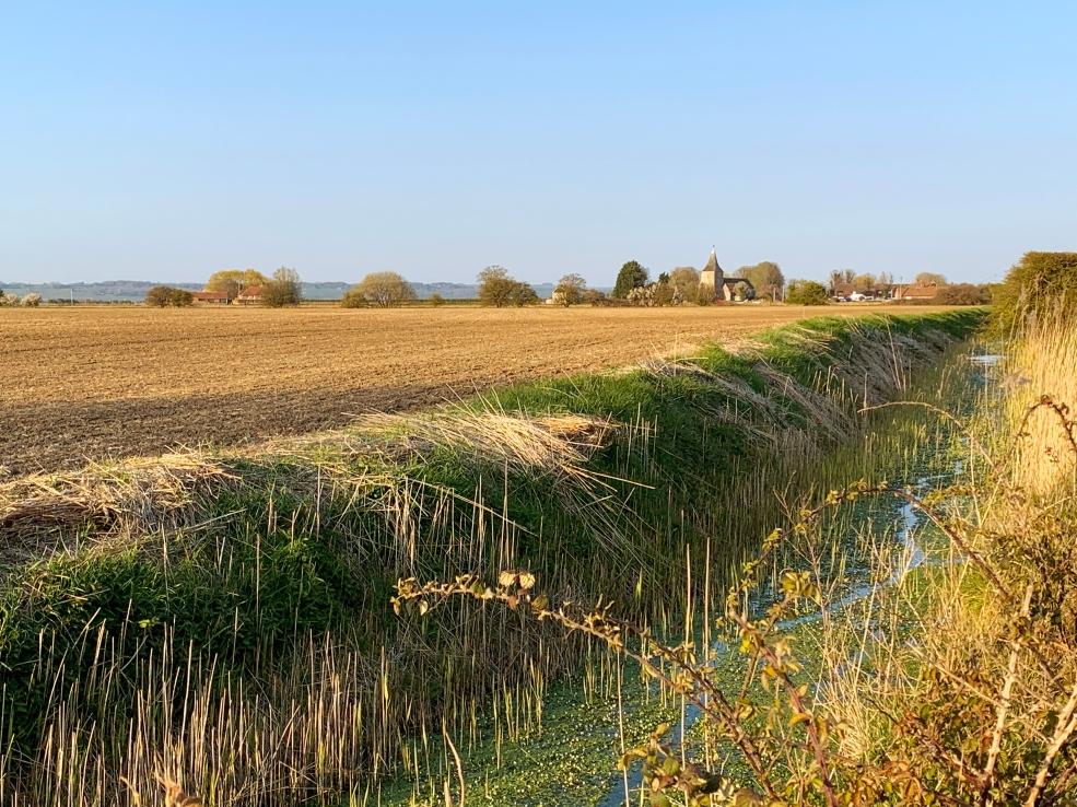 Romney Marsh